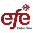 Palestine EFE - التعليم من أجل التوظيف